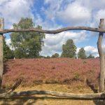 Lüneburger Heide: Besuch beim Korbimker