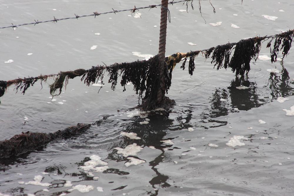 Sylt im Winter, Rantumer Becken