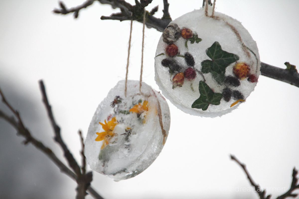 Eiskunst, Laternen aus Eis, Eislaternen, gefrorene Herzchen aus Eis, landart,