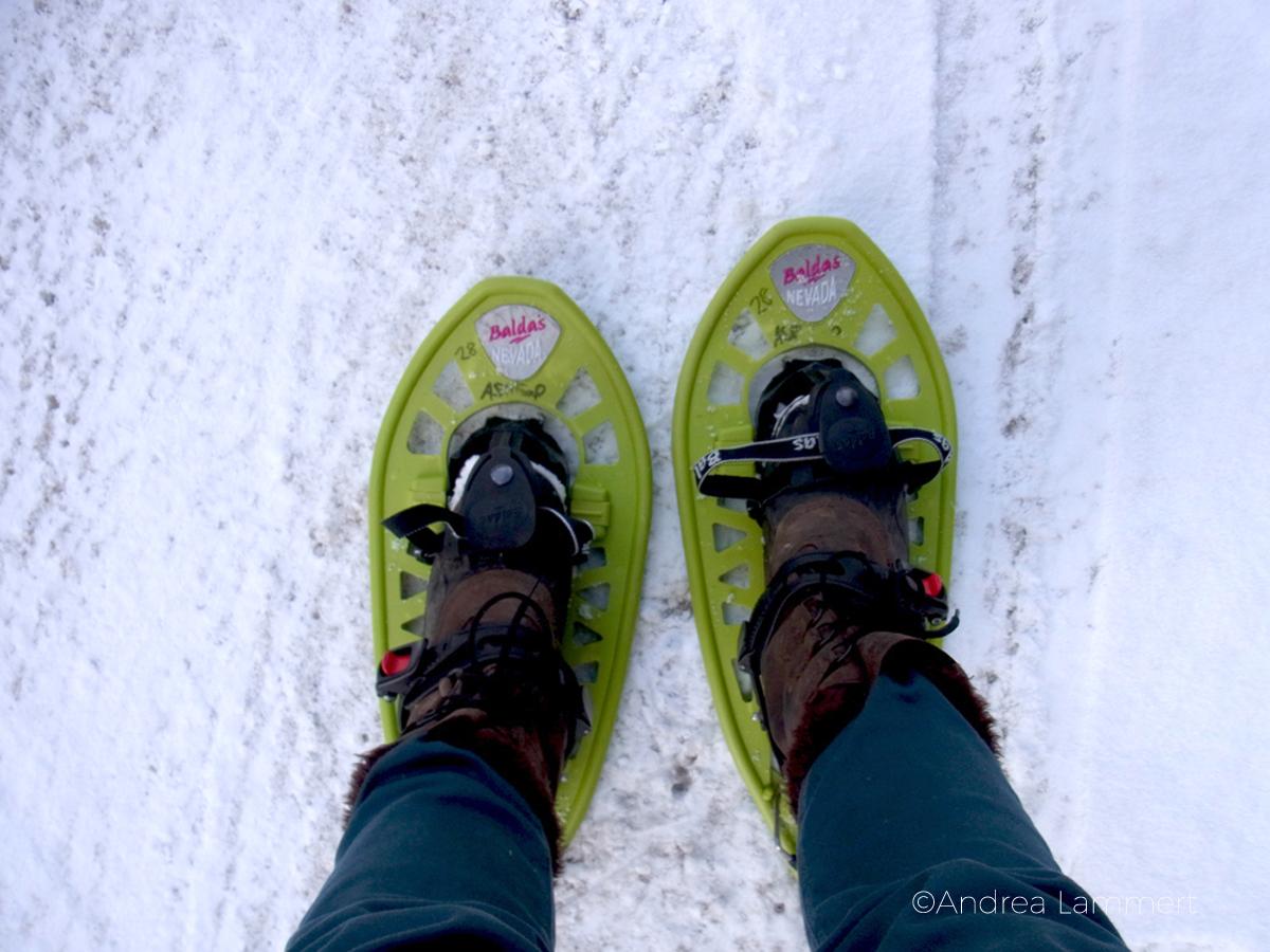 Oberammergau, Schneeschuhwandern, Wildniskurs, Jugendherberge, Ammergauer Alpen