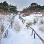 Usedom im Winter: Eisschollen und Sanddorngenuss