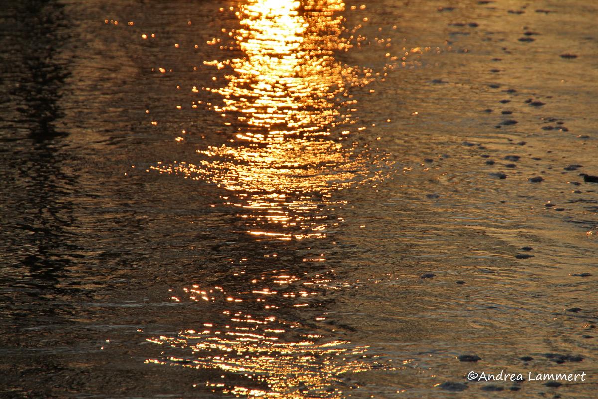 Soltau, ein Morgen an der Böhme