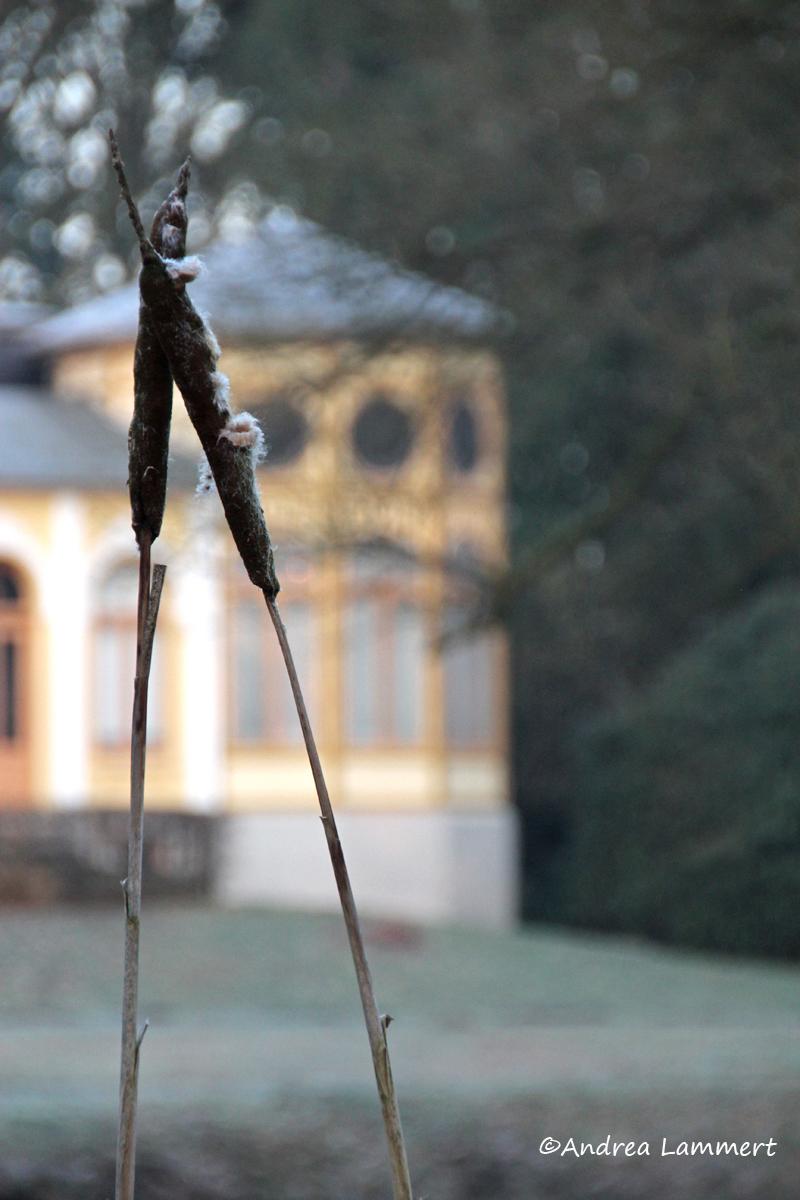 Soltau, Breidings Garten, Lüneburger Heide, Niedersachsen