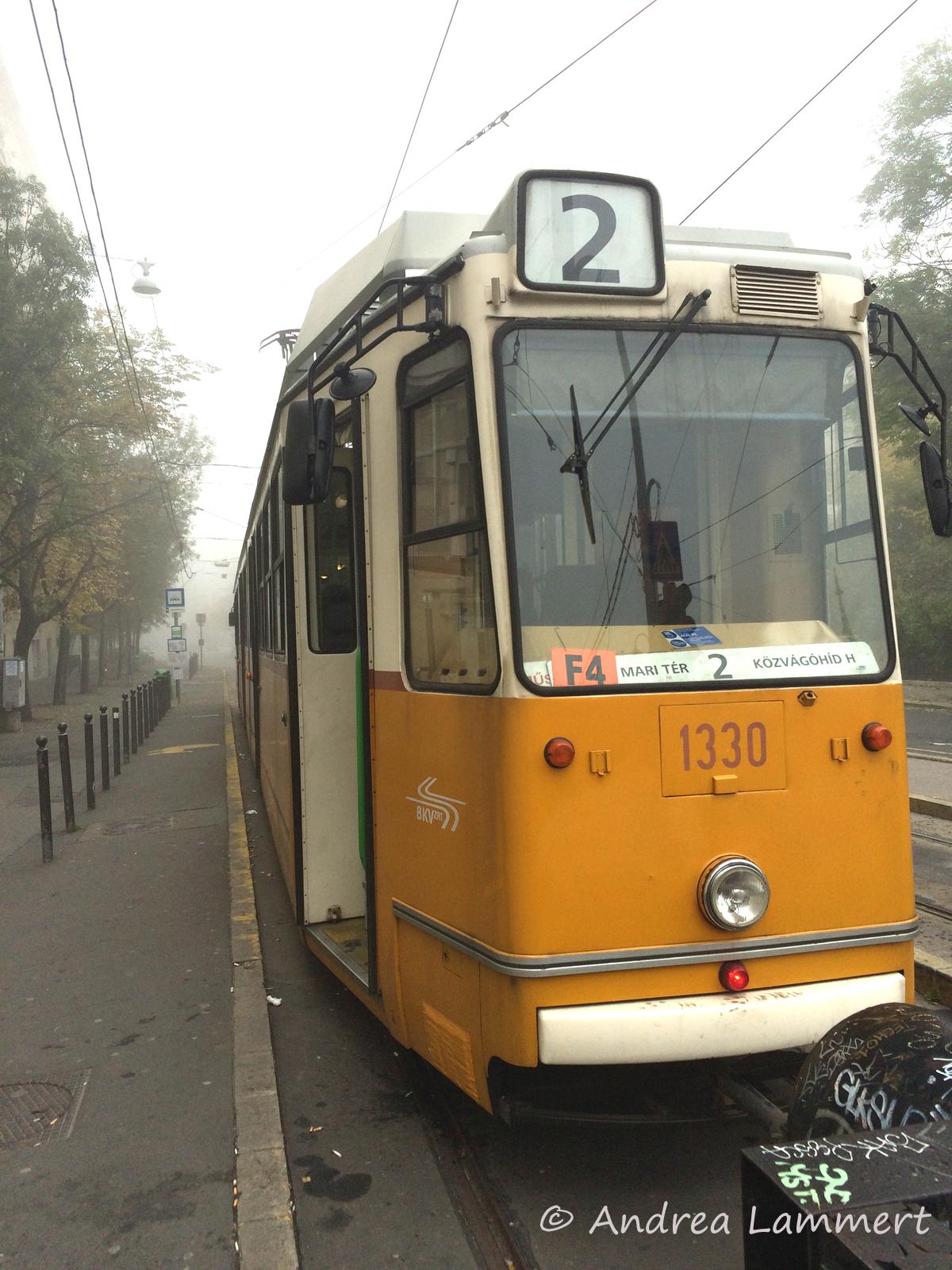 Budapest-Geheimtipps, Donau, Parlament, Straßenbahn