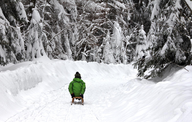 Harz, Rodeln, Oderteich, Winterwandern, Winter im Harz, Hühnerbrühe, Rodelbahn