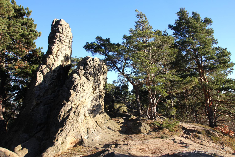 Teufelsmauer Timmenrode, Harz, Blankenburg, Hamburger Wappen,