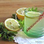 Limonade selbstgemacht: Deister-Dudler mit Waldmeister