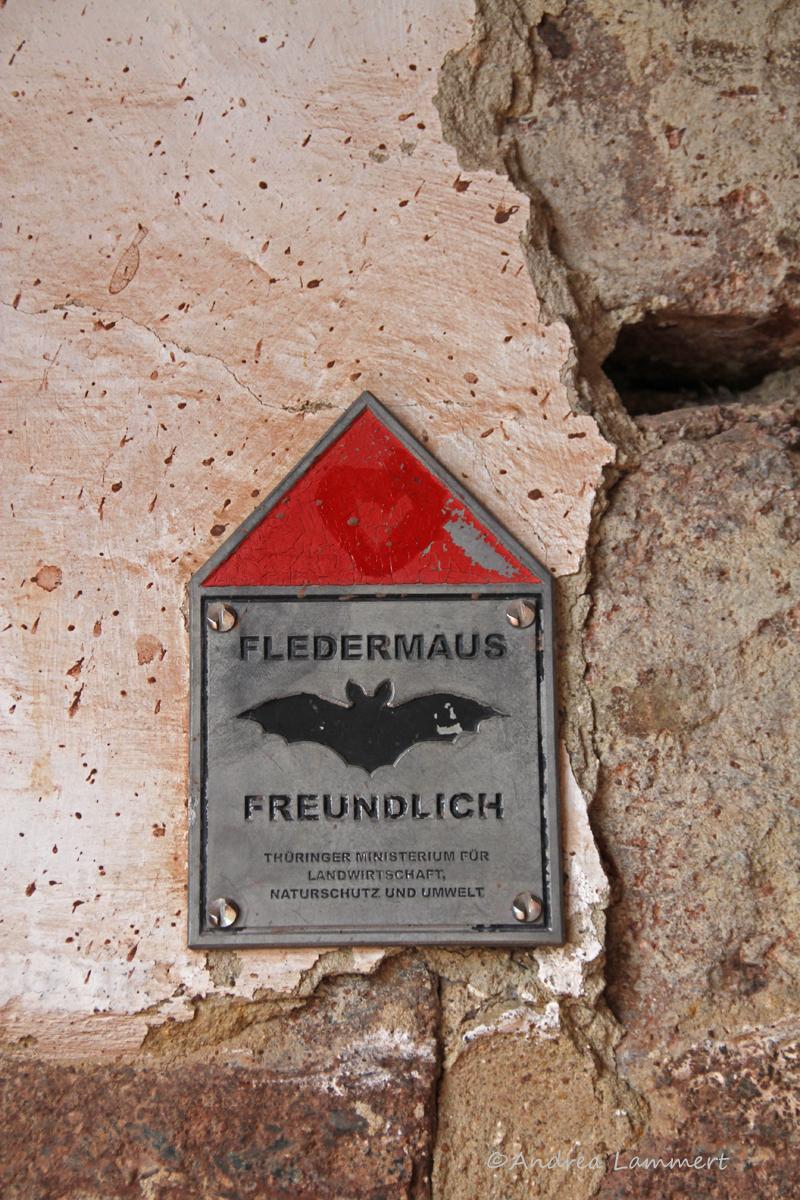 Wartburg, Tipps, Besichtigung, Thüringen