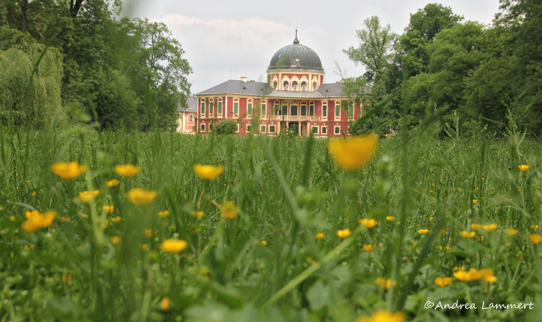 Elberadweg, Tschechien, Veltrusy, Schloss