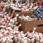 Genuss auf Korsika: 11 kulinarische Tipps
