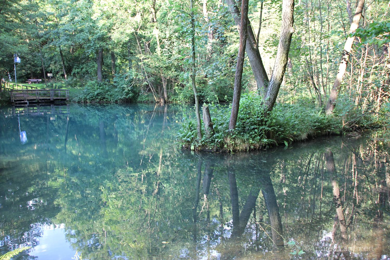 Rhumequelle, Rhumspringe, Kraftort Rhumequelle, Harzvorland