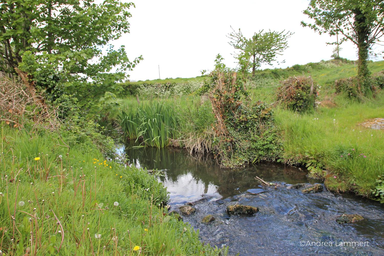 St. Ciaran's Well, Kells, Irland, Castlekeeran, Bach