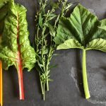 Alternativen zu Spinat: Mangold, Melde und Co
