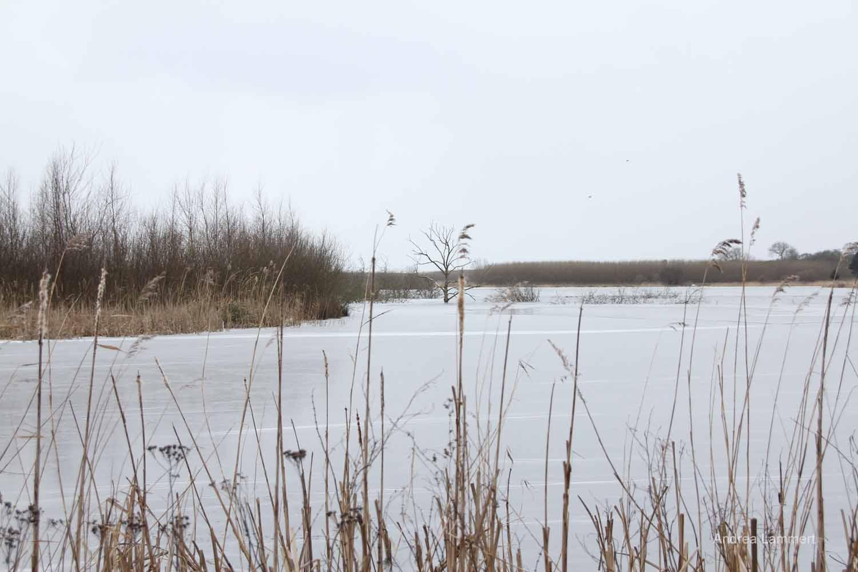 Langeland, Südsee, Dänemark im Winter