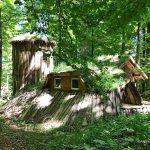 Waldabenteuer in Deutschland