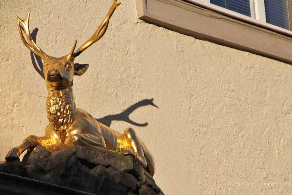 Im Dreiländereck zwischen Niedersachsen, Hessen und NRW liegt Warburg mit seinen 23 000 Einwohnern. Erstmals urkundlich erwähnt wurde der Ort 1010, Kennzeichen war die Burg auf dem Wartberg. Hier Goldener Hirsch