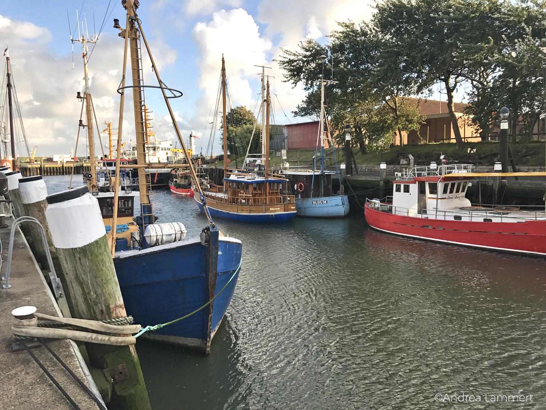 Tipps für Büsum, Nordseestadt zwischen Krabbenkuttern, Hafen, Familienbucht und Leuchtturm