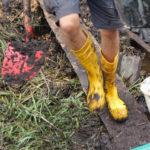Jasmund: Schwarze Erde auf Rügen – Klimaschutz im Moor