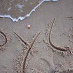 10 Empfehlungen für Sylt