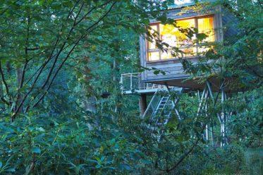 Schlafen im Baumhaus-Hotel Baumgeflüster Bad Zwischenahn ist ein Erlebnis, die Häuser befinden sich in den Bäumen, das Resort ist ein Geheimtipp in Niedersachsen.