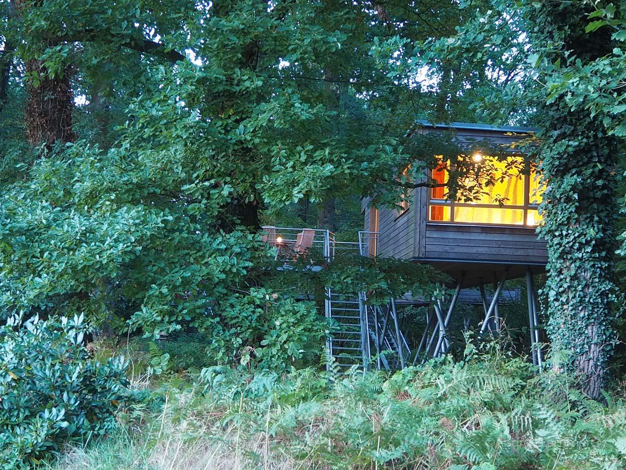 Schlafen Im Baumhaus Hotel Baumgeflüster Bad Zwischenahn Ist Ein Erlebnis,  Die Häuser Befinden Sich