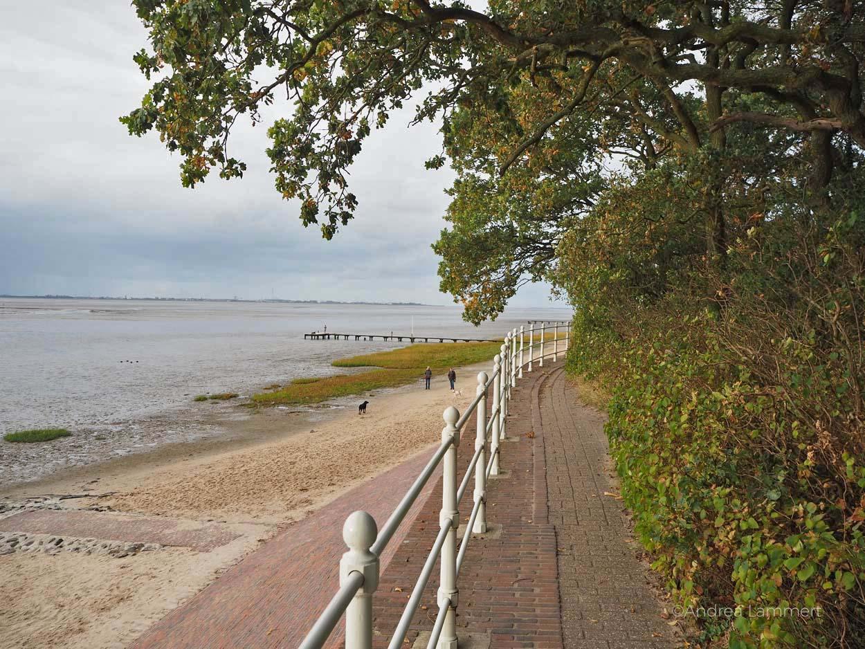 Warum ich die Nordsee liebe - Gründe für den Urlaub an der Nordsee, Nordseeinseln, einsame Inseln in der Nordsee, Warum ich die Nordsee liebe - Gründe für den Urlaub an der Nordsee, Nordseeinseln, einsame Inseln in der Nordsee,Am Kurhaus in Dangast gibt es den einzigen Wald direkt am Watt in Deutschland