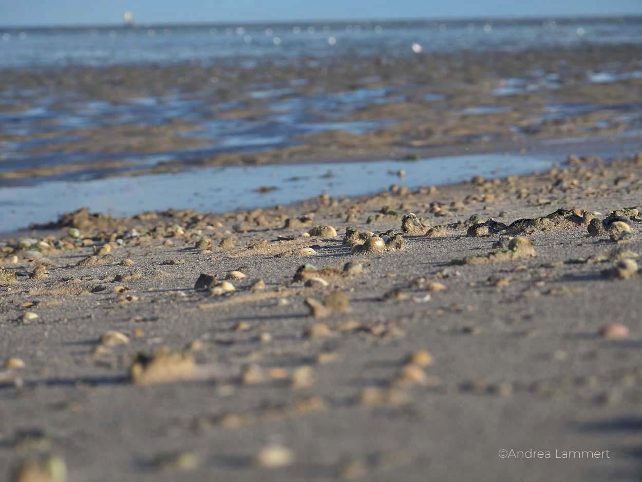 Strand bei Schillig, ganz schön viel Sand. Nordseeküste Niedersachsen