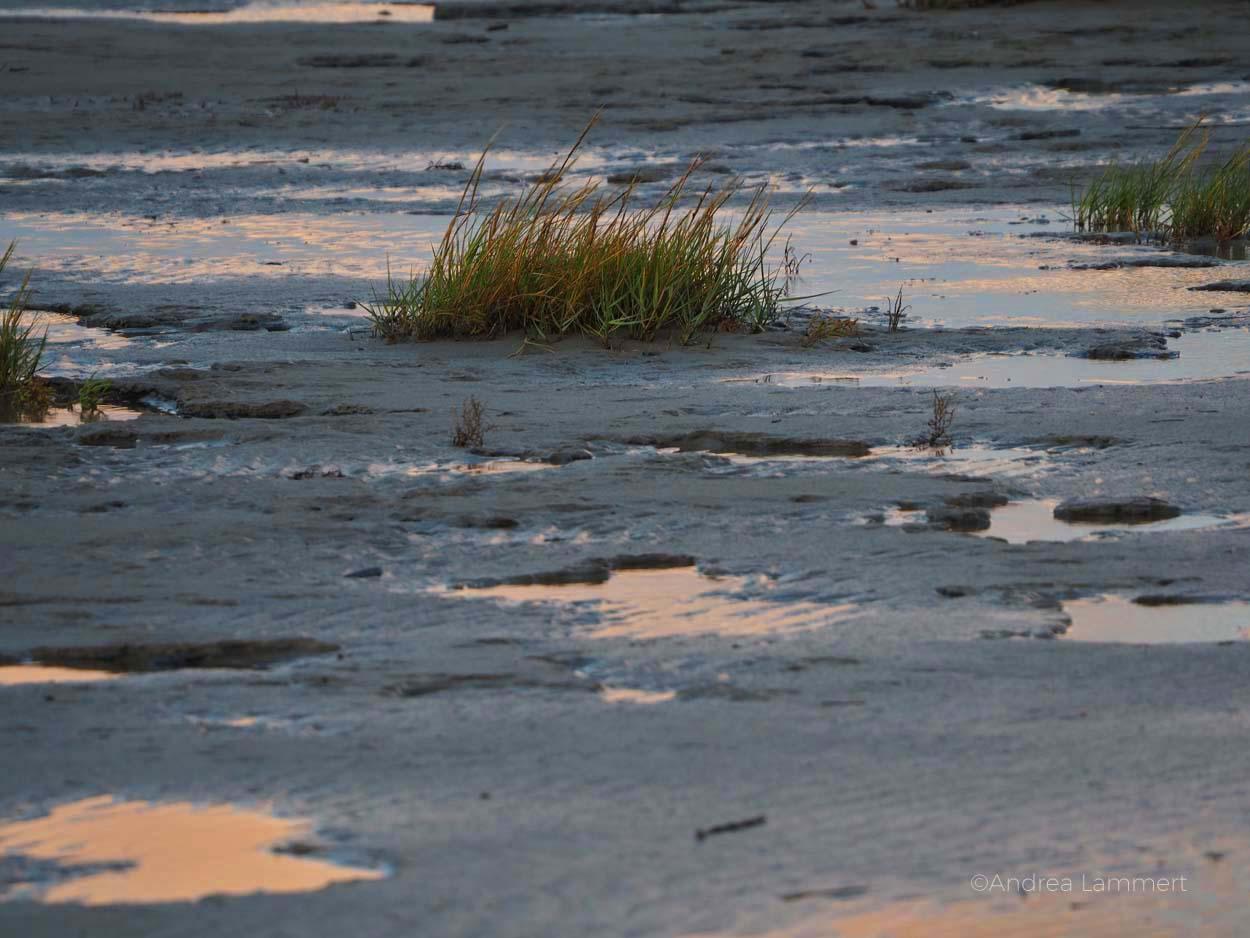 Strand, Regenbogen. Zwielicht am Abend, nur Sonne, Licht und Watt, Nordseeküste, Nordsee. Warum ich die Nordsee liebe - Gründe für den Urlaub an der Nordsee, Nordseeinseln, einsame Inseln in der Nordsee, Horum, hooksiel
