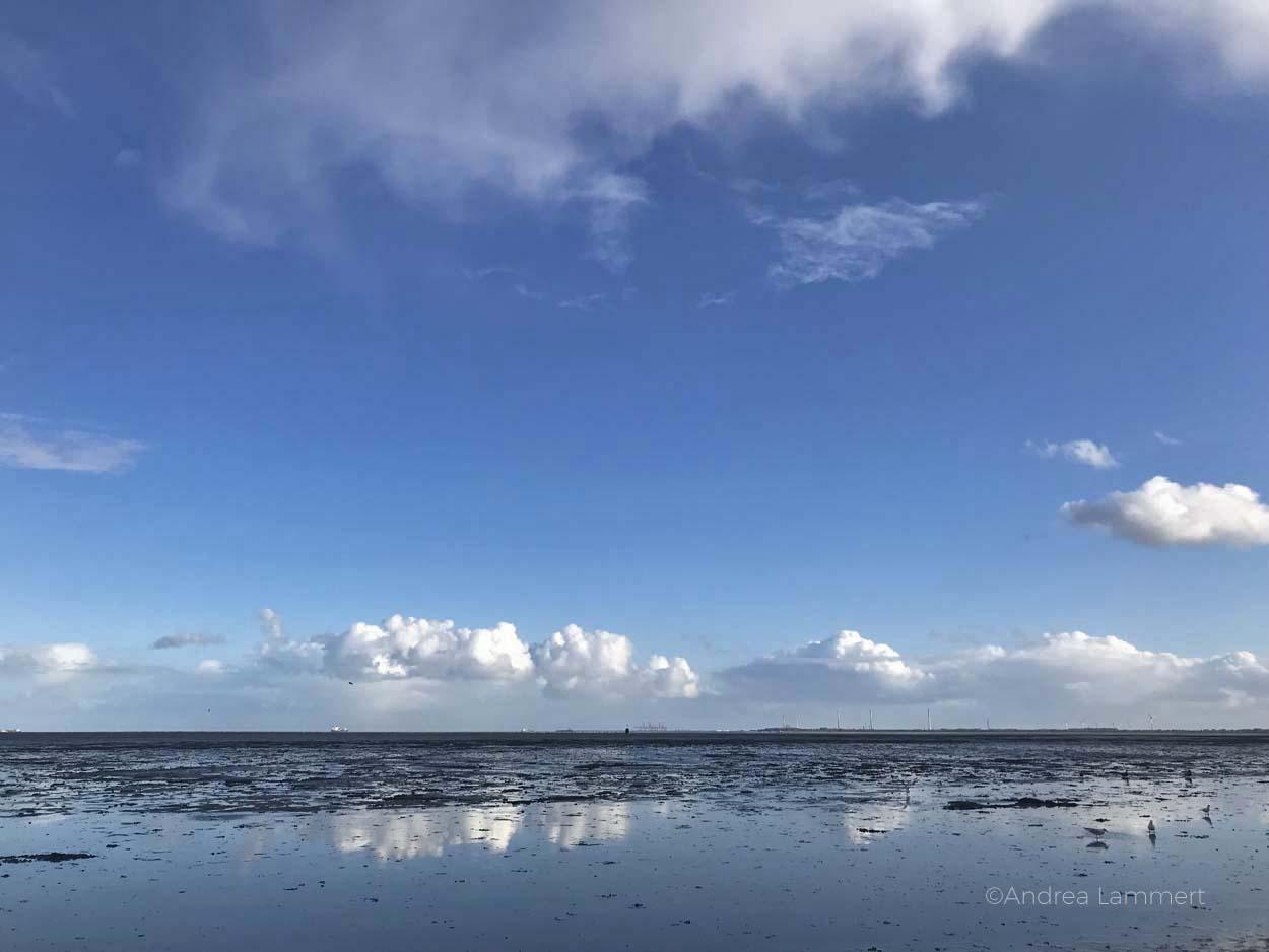Karren bei Hooksiel, Warum ich die Nordsee liebe - Gründe für den Urlaub an der Nordsee, Nordseeinseln, einsame Inseln in der Nordsee, Warum ich die Nordsee liebe - Gründe für den Urlaub an der Nordsee, Nordseeinseln, einsame Inseln in der Nordsee, Deich Greetsiel