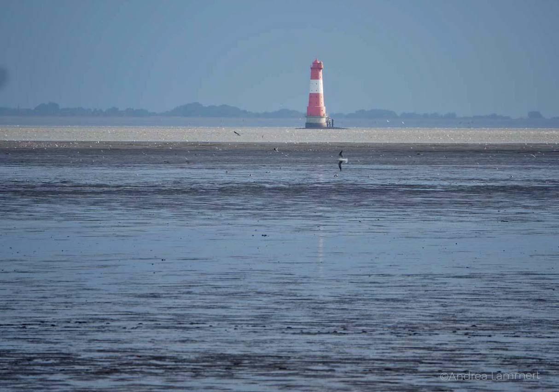 Leuchtturm im Jadebusen: Warum ich die Nordsee liebe - Gründe für den Urlaub an der Nordsee, Nordseeinseln, einsame Inseln in der Nordsee,