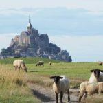 Kraftorte: Der heilige Mont-Saint-Michel