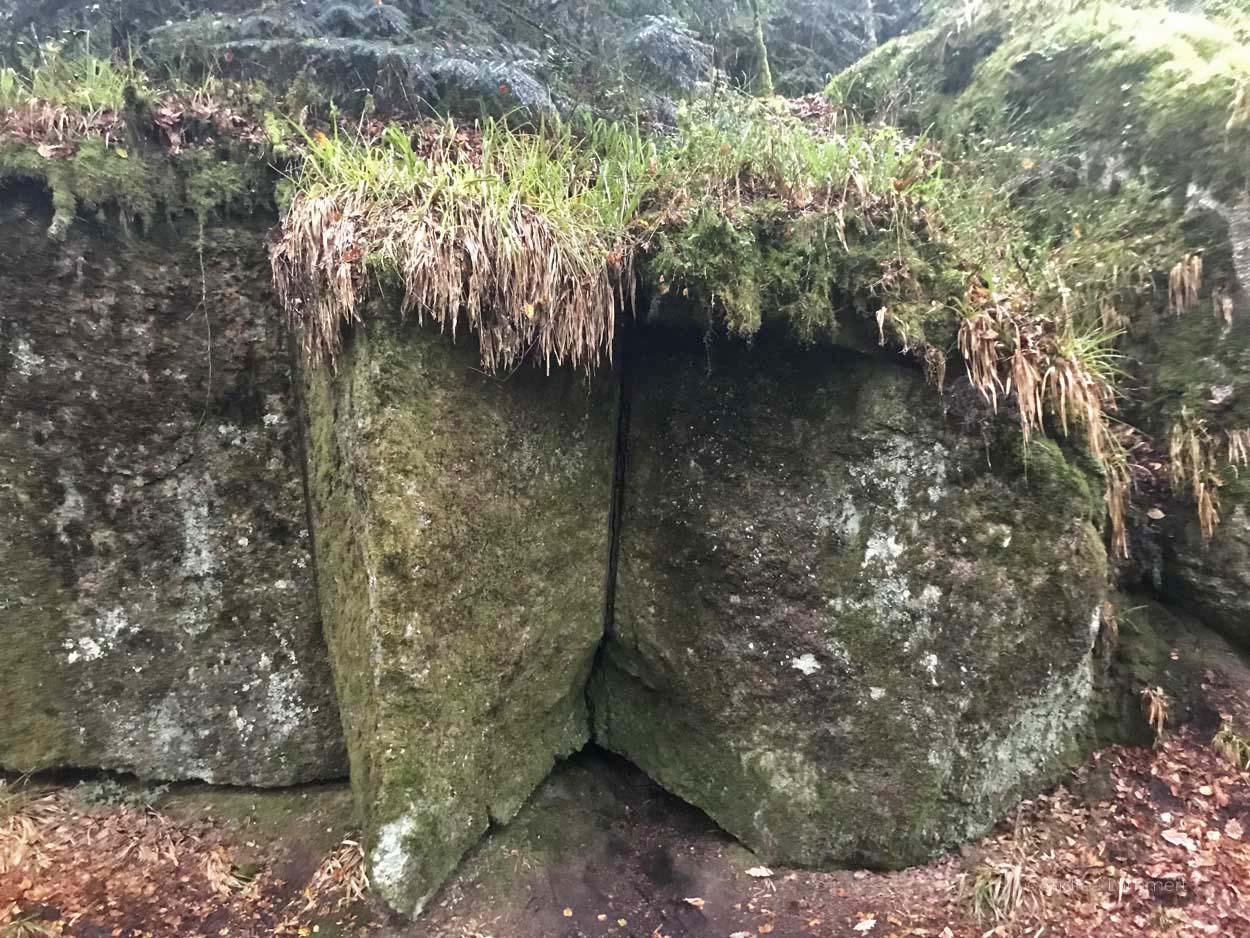 Bretagne Tipps, Huelgoat, Artuswald, Wald der Bretagne, Märchenwald, Anderswelt, Kraftplatz Bretagne, Mystik Bretagne, Keltenplätze Bretagne, Sagenhafter Baum