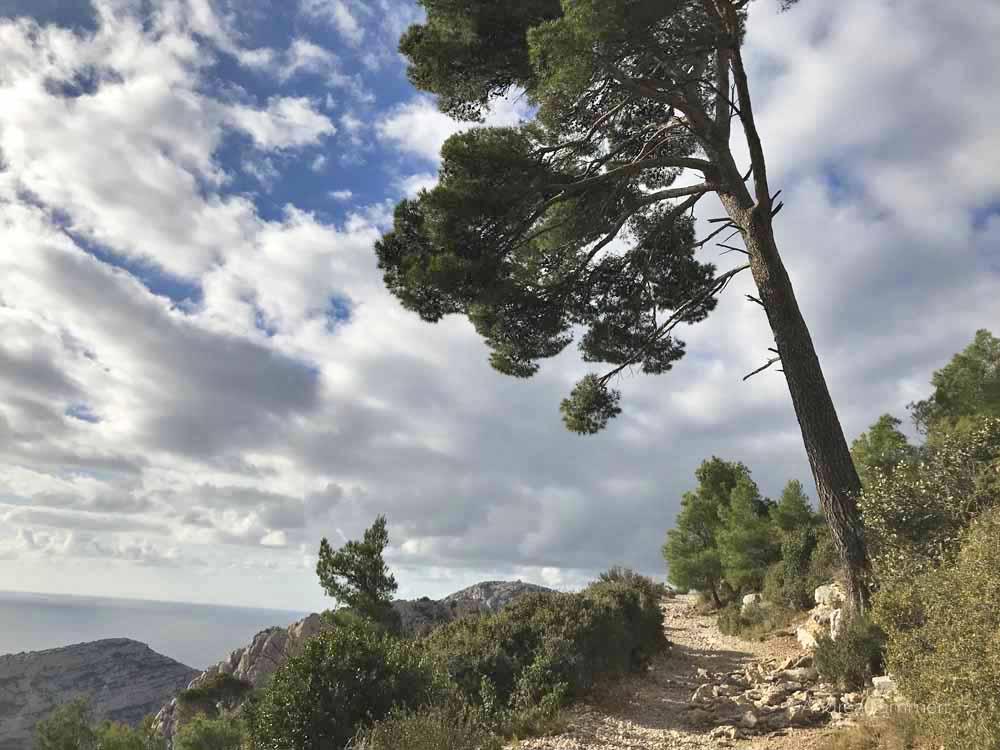Wanderung durch die Calanques bei Marseille, Aussicht auf Schluchten und felsen und Fjorde