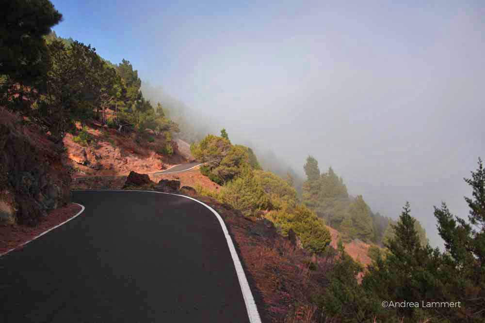 Die Straße von Frontera zum Pico Malpaso ist oft von Wolken verhüllt.