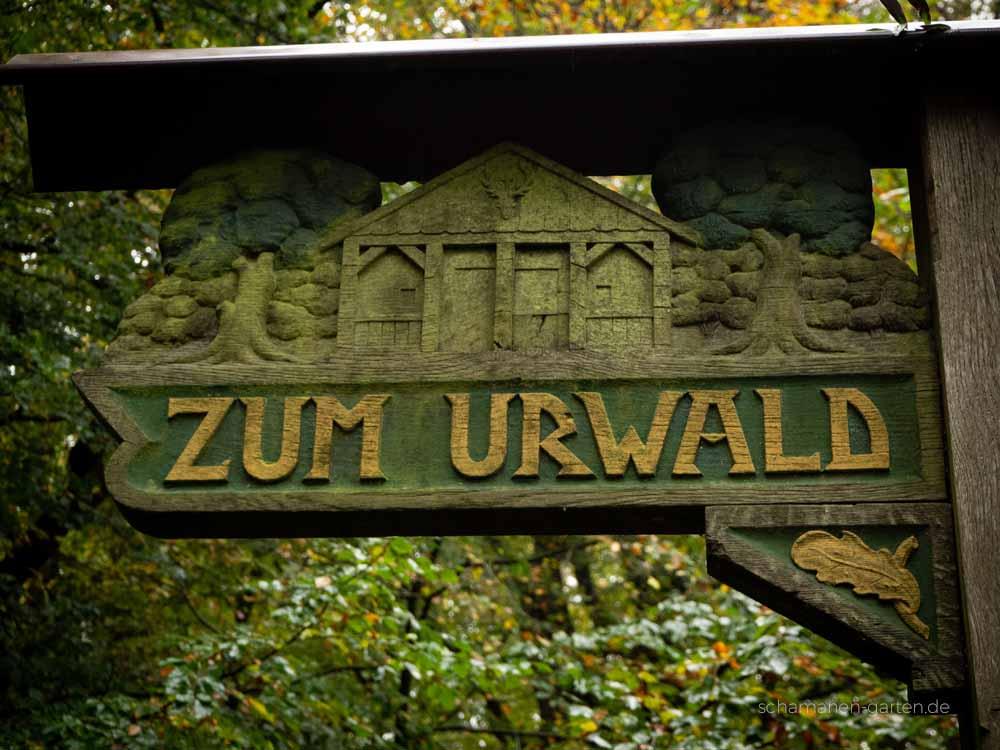 Neuenburger Urwald, Zetel, Ostfriesland, schönster Wald, Zauberwald