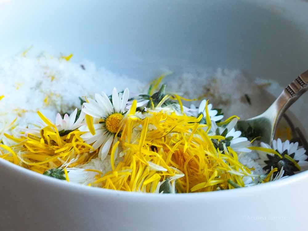 Gänseblümchen-Salz selbst gemacht