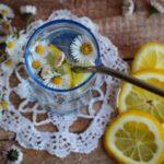 Gänseblümchen-Limo