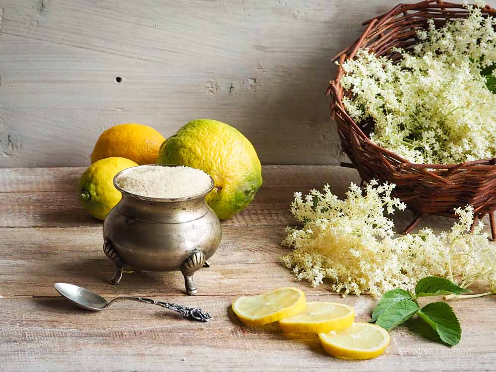 Holunderblütensirup - Zutaten ohne Zitrinensäure: Zucker, Blüten und Zitronen