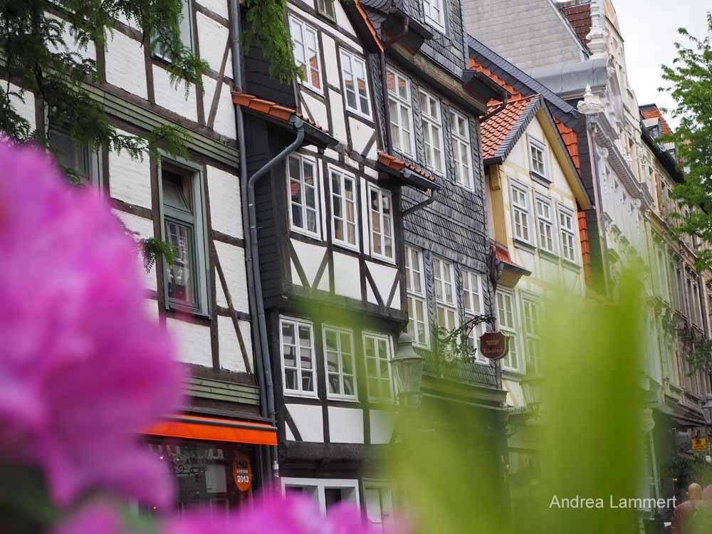Das Magniviertel bietet Fachwerkschönheit und gehört zu den beliebtesten Sehenswürdigkeiten Braunschweigs.