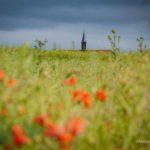 Calenberger Land: Toskana des Nordens