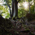 Ith: Auf dem Götterpfad