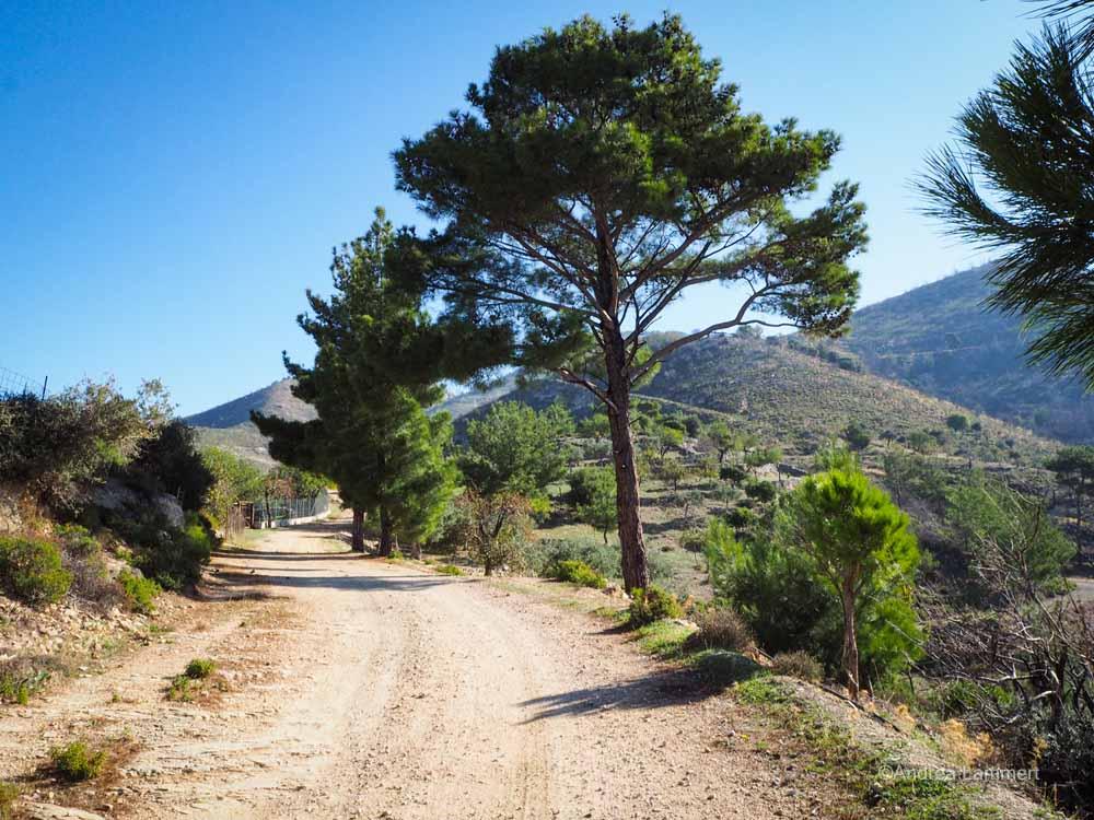 Der wunderbare Weg zum Gipfel, im Gebirge von Thassos wandern