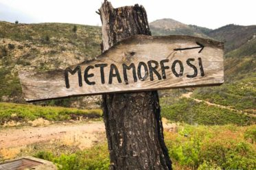 Metamorfosi auf Thassos ist ein ganz besonderer Ort
