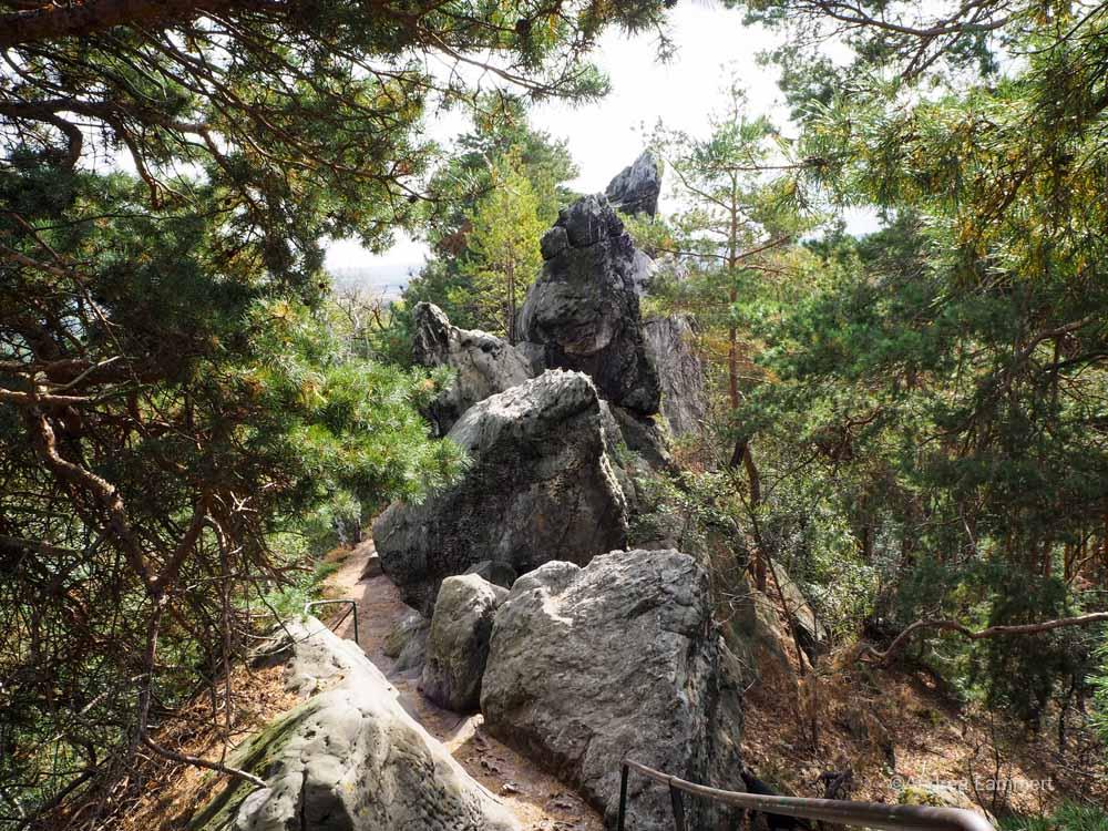 Wandern auf der Teufelsmauer im Harz