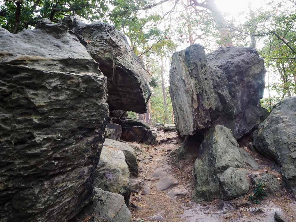 Steiler Anstieg über eine Treppe auf dem Kammweg der Teufelsmauer