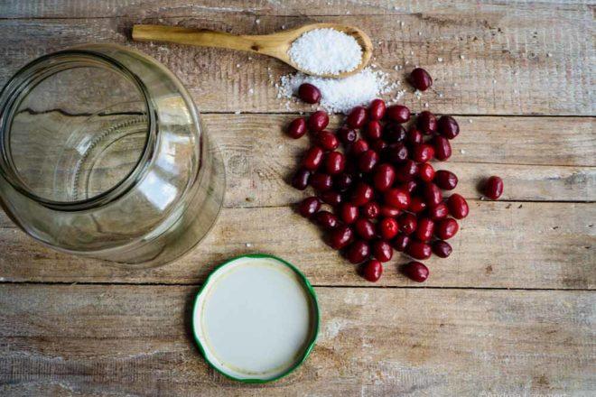 Rezept für Oliven aus Kornelkirschen