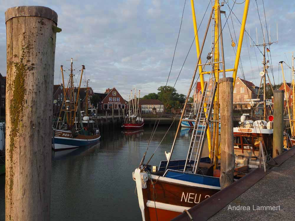 Neuharlingersiel, Hafen, Fähre Spiekeroog, Ferienwohnung, Sehenswürdigkeiten, Hafen
