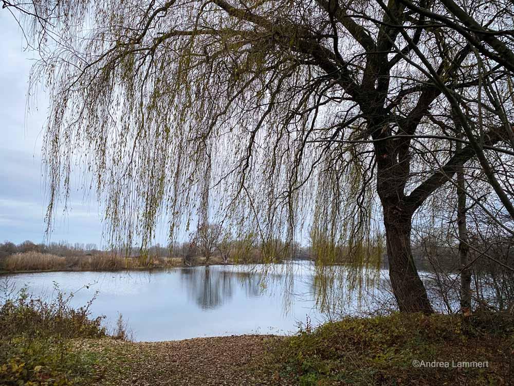 Koldinger Seen, Wanderung, Leineaue