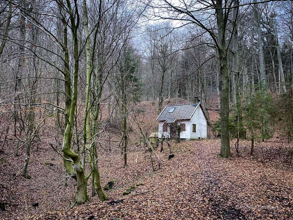 Wandern im Deister, Alte Teufel, Wennigsen, Nienstedt, Nordmannsturm