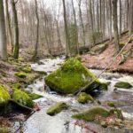Wandern im Harz: Durchs wilde Ilsetal